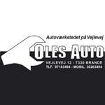 Oles Auto_web